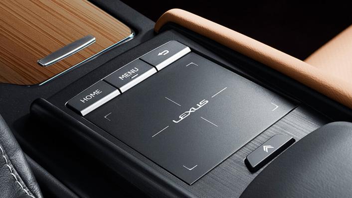 2021 Lexus ES 250 Limited Edition Interior 008