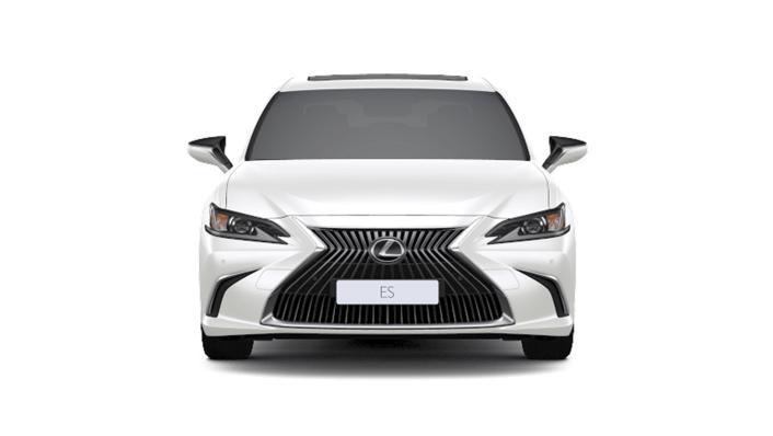 2021 Lexus ES 250 Limited Edition Exterior 002