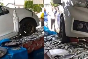 How did this Perodua Myvi land on a fish stall?
