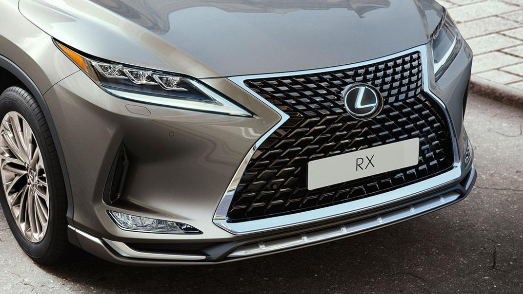2021 Lexus RX 300 Luxury Special Edition Exterior 009
