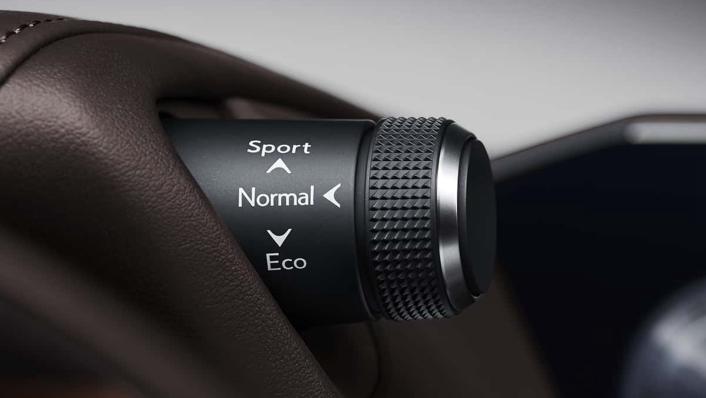 2021 Lexus ES 250 Limited Edition Interior 002