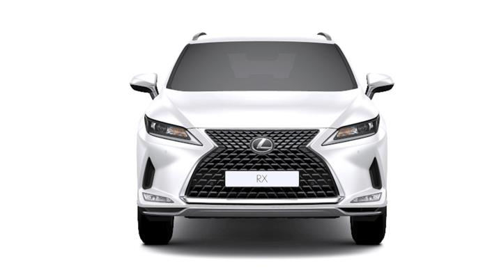 2021 Lexus RX 300 Luxury Special Edition Exterior 002