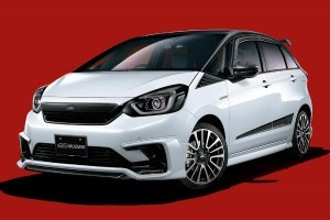 Honda Jazz Type R is possible, if there are 10,000 orders, at least