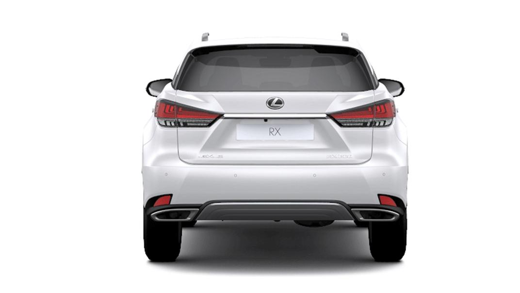 2021 Lexus RX 300 Luxury Special Edition Exterior 006