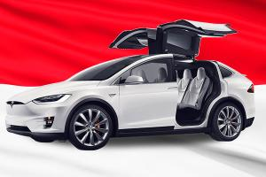 Tesla submits investment proposal to Indonesia, official meeting next week