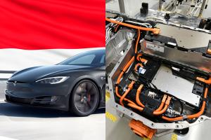 We have Petronas, Indonesia now has a gov-owned EV battery company