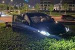 Honda HR-V in the bushes; driver collapses in front of bemused police officers