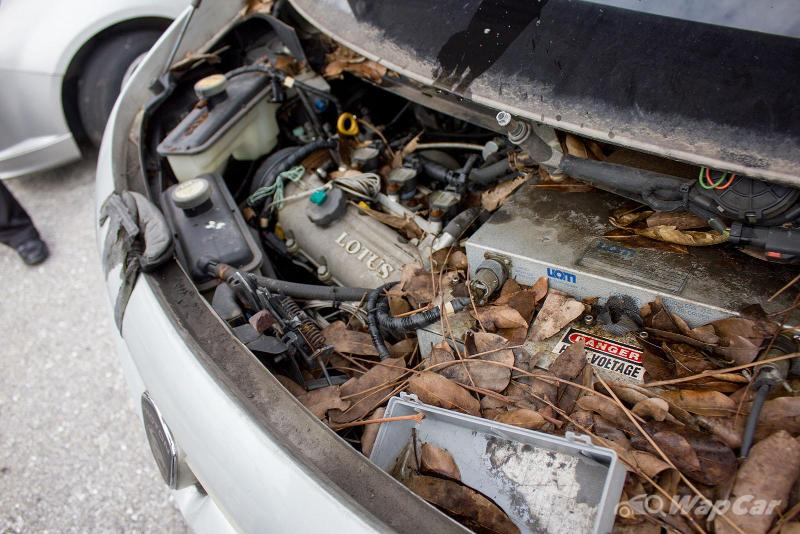 Should you clean your engine bay? 02