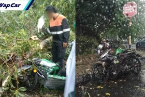 Ribut di Cheras, 'rider' Grab Food maut dihempap pokok tumbang