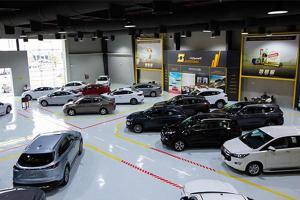 Oil-rich Saudi Arabia bans 16 carmakers for failing fuel standards
