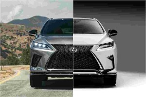 New Lexus RX – we show you what's new for 2019