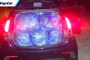 380 kg daun ketum disumbat dalam Perodua Myvi untuk seludup